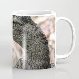 Duck Close Up Coffee Mug