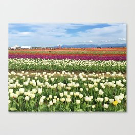Woodburn Tulips Canvas Print
