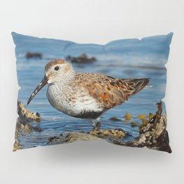 Bird on the Beach / A Solitary Dunlin Pillow Sham
