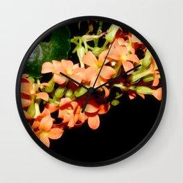 Kalanchoe Blossfeldiana 3 Wall Clock