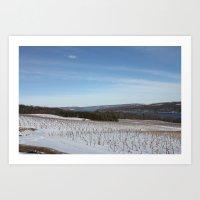 Evergreen Lek Vineyard Art Print