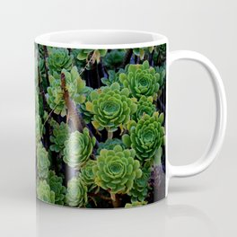 Succulent valley Coffee Mug