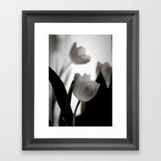 Tulip Love bw Framed Art Print