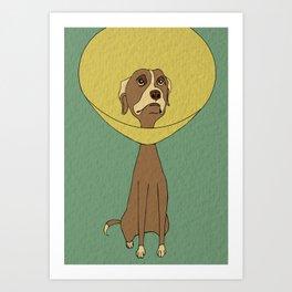 Get Well, Dog Art Print