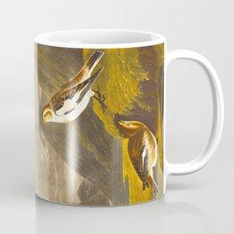 Snow Bunting Bird Coffee Mug