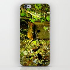 Bird in the Thicket iPhone & iPod Skin