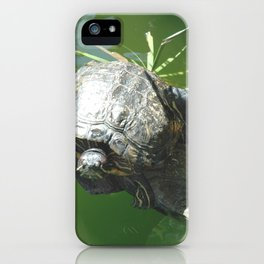 Turtle Love iPhone Case