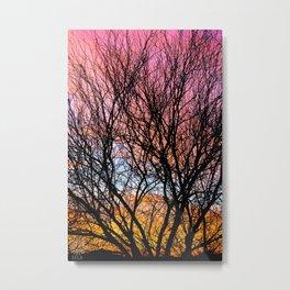 Mesquite Sunset  Metal Print