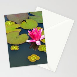 Pink waterlily Stationery Cards