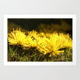 Beautiful Yellow  Art Print