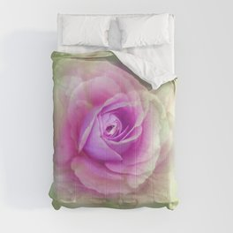 absinthe  Comforters