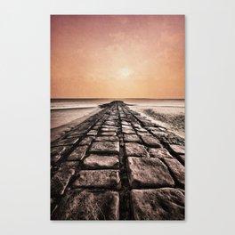 sea : study I Canvas Print