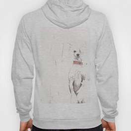 Chinese crested 25 Hoody