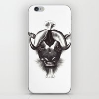 buffalo iPhone & iPod Skins featuring Buffalo  by tangledribbons