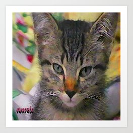 Swoozle's Tabby Kitten After Nap Art Print