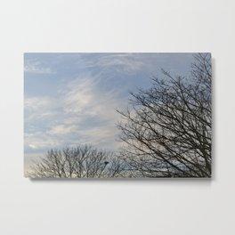 Blue Sky and Trees Metal Print