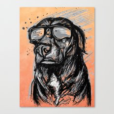 Only Cool Dogs Stare at the Sun Canvas Print