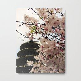 Pink Blossoms at Japantown. Metal Print