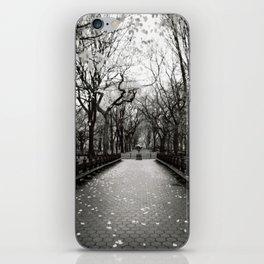 Central Park, November. iPhone Skin