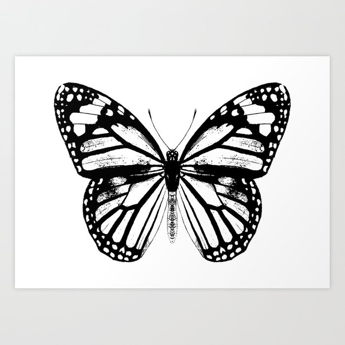 Monarch Butterfly | Vintage Butterfly | Black and White | Kunstdrucke
