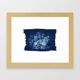 "Cyanotype on Paper ""CHARDON"" Framed Art Print"