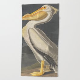 Vintage Illustration of a White Pelican (1863) Beach Towel
