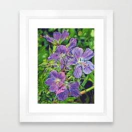 Six Wild Geraniums Framed Art Print
