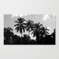 puerto rico Canvas Prints featuring Palm Trees Puerto Rico by Derek Delacroix
