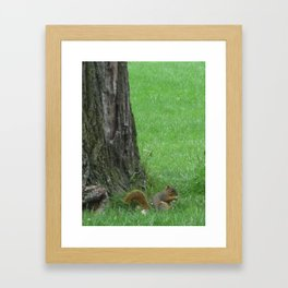Down He Scampers Framed Art Print