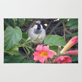 Sparrow in the Vine Rug