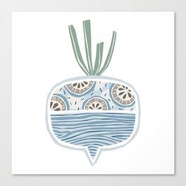 Turnip Canvas Print