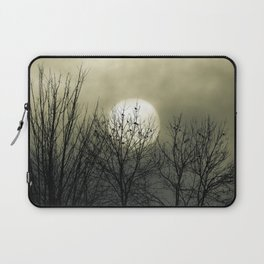 Winter Into Spring Laptop Sleeve