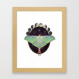 Indian moon Moth Framed Art Print