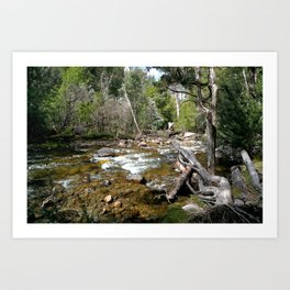 Hugel River Art Print