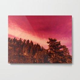 0302 Metal Print