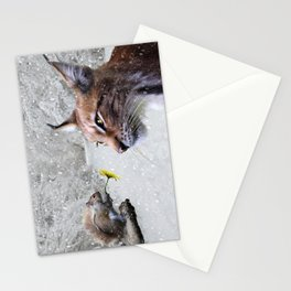 Lynx and Squirrel Stationery Cards