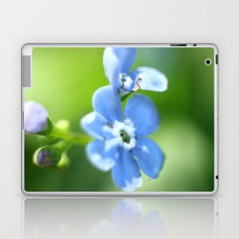 Forget-me-not closeup with blurred focus and shallow depth of field. Laptop & iPad Skin