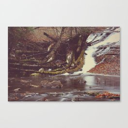 Whitefish II Canvas Print