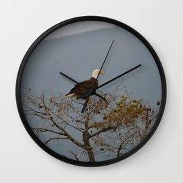 Bald Eagle above the Athabasca River in Jasper National Park Wall Clock