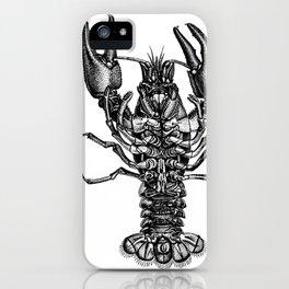 Rosenhof crayfish engraving from 1749 iPhone Case