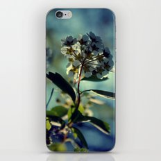 A change of pace iPhone & iPod Skin