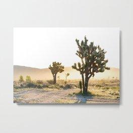 Joshua Tree Sunrise Metal Print