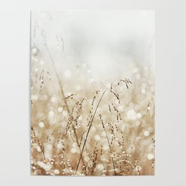 Dewdrop Nature Photography, Neutral Dew Drop, Gold White Brown Beige, Cream Water Drops Poster
