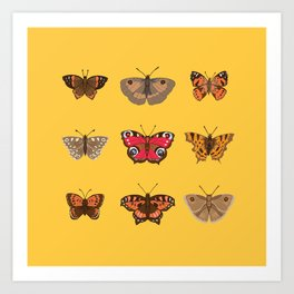 Butterflies Mounted on Yellow Art Print