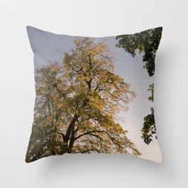 Perfect autumn-sunset colors Throw Pillow