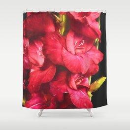 Red Gladiolas on Black Shower Curtain
