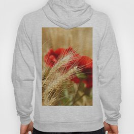 Field of golden wheat with red poppy flowers Hoody