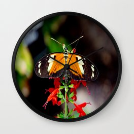 Tiger Longwing Butterfly Wall Clock