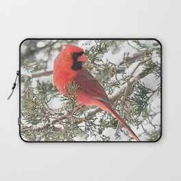 Cardinal on a Snowy Cedar Branch (v) Laptop Sleeve