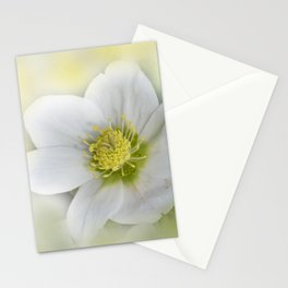 the beauty of a summerday -58- Stationery Cards